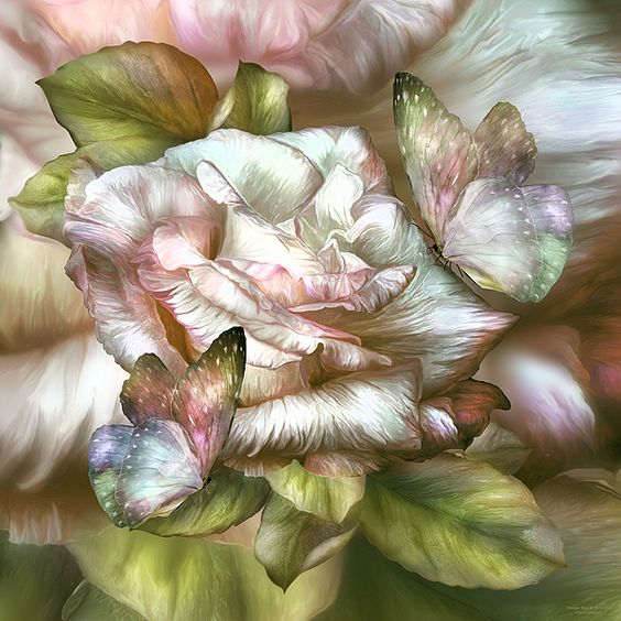Antique Rose And Butterflies by Carol Cavalaris:
