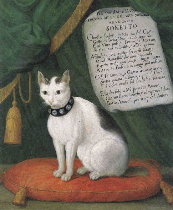 Giovanni Reder Portrait of the Cat Armellino With a Sonnet by Bertazzi: