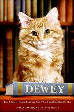 Perfect book for cat lovers: