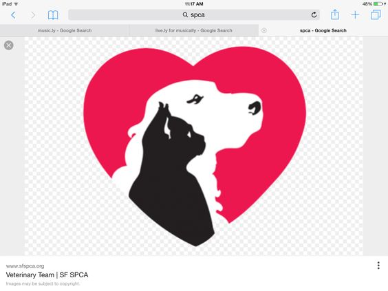 Pin By Sheabear925 On Spca Animal Planet Animal Free Dog Cat