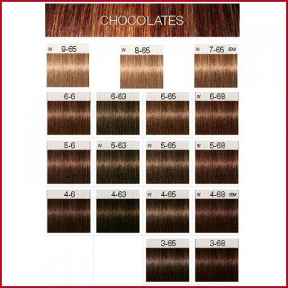 Igora Hair Color Shades Igora Hair Color Shades 621277 Schwarzkopf Igora Royal T Schwarzkopf Hair Color Schwarzkopf Hair Colour Schwarzkopf Hair Color Chart