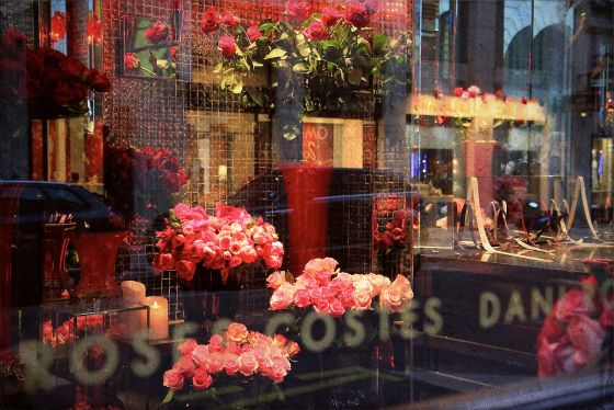 Roses at Hôtel Costes, by Meagan Kirkpatrick