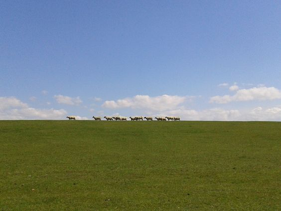 Tinnum auf Sylt: Buchen Sie Ihren Nordseeurlaub