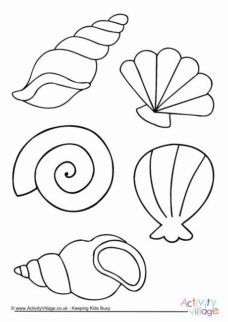 Sea Shell Coloring Page Lovely Shell Colouring Page In 2020 Coloring Pages Mermaid Theme Felt Crafts