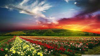 تنزيل احلى صور خلفيات روعة وجديدة وجميلة من أفضل الخلفيات بجودة Hd Landscape Wallpaper Cool Backgrounds Romantic Wallpaper