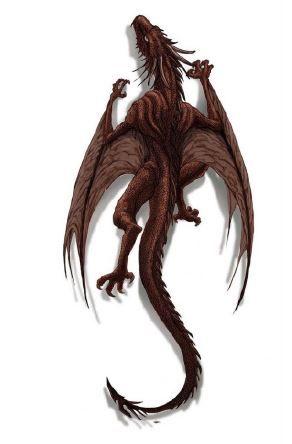 Pequeño dragon