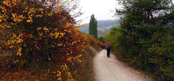 Caminho de Santiago - Autor: Maurício Berka