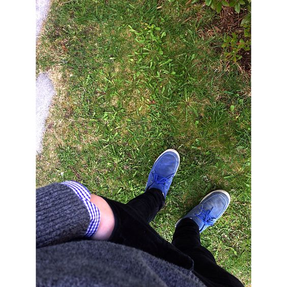 Checked shirt Grey sweater Black pants Lacoste shoes