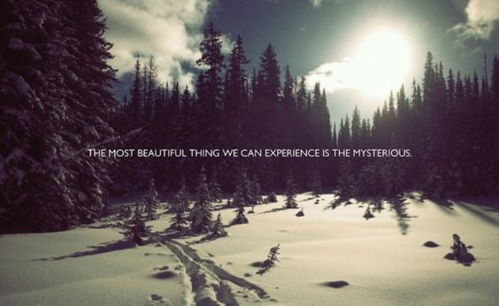 The Most Beautiful Thing #quotes #inspirational