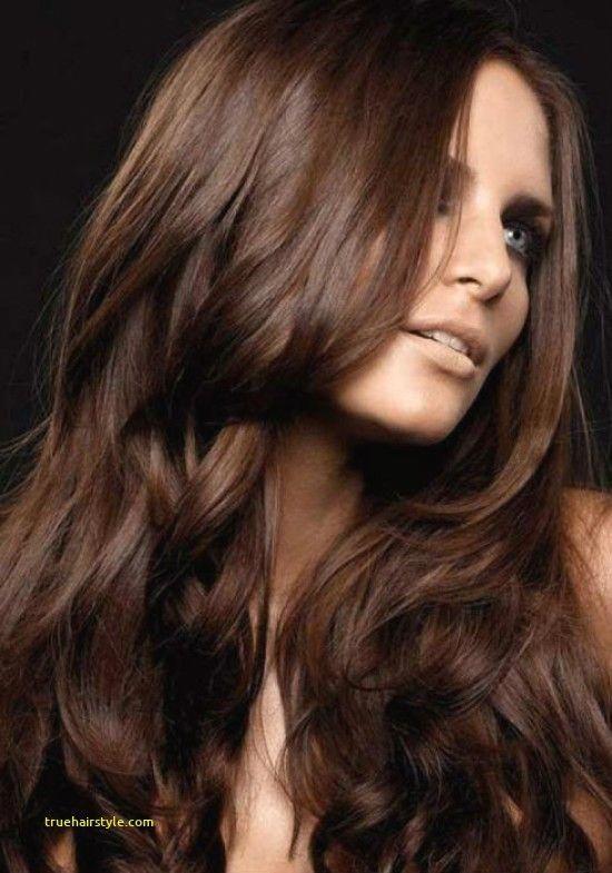 40++ Milk chocolate hair inspirations