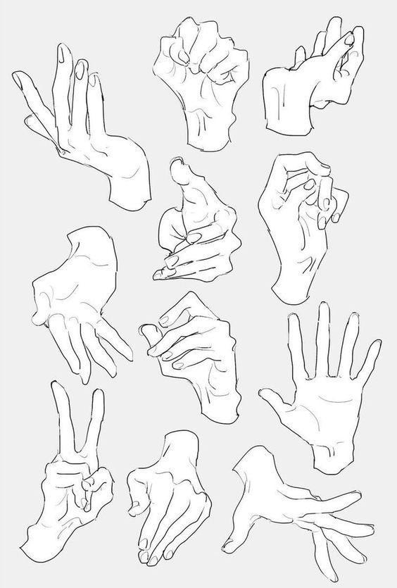 Female Hand Drawing Reference : female, drawing, reference, Drawing, References, Reference,, Reference