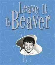 leave-it-to-beaver, where we learned countless life lessons brom the beaver