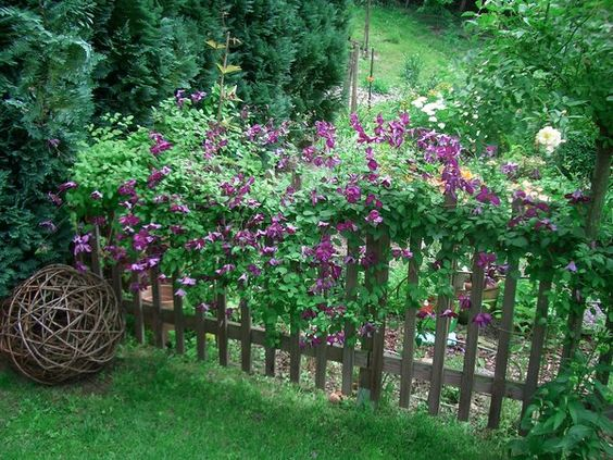 Trennwand mit Sichtschutz und Abstellraum für Garten, Balkon und