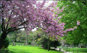 Parque Monceau - París