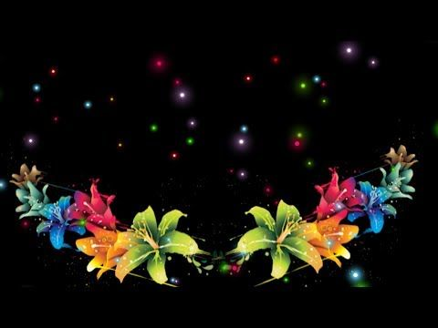 Flowers Black Screen Flower Animation Video Free Download Star Video Effect Youtube Wedding Background Images Wedding Background Background Images Full hd flower animation background