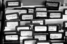 El Archivo del Instituto del Patrimonio Cultural de España en línea - Buscar con Google