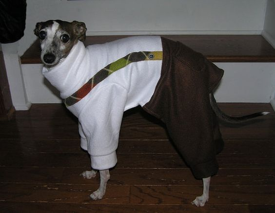 Suspenders fleece dog pajama  Italian greyhound by TailsMeAboutIt, $20.00