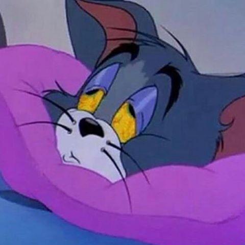 𝐃𝐀𝐍𝐈𝐄𝐋𝐋𝐄 Tom And Jerry Cartoon Cartoon Profile Pictures Vintage Cartoon
