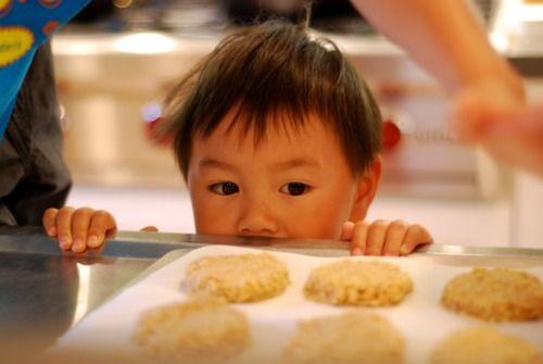 sugar free, grain free cookies