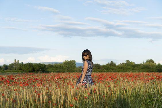 Vestido feminino em Provence | Danielle Noce