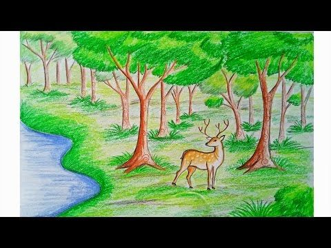 How To Draw Scenery Of Stream Waterfall Step By Step Youtube Forest Drawing Nature Drawing Landscape Drawings