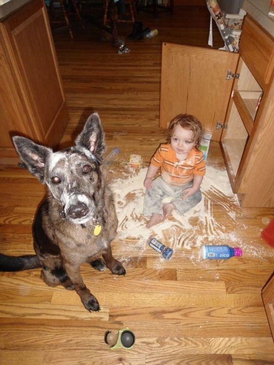 20 φωτογραφίες όπου τα παιδιά σας και τα κατοικίδια έκαναν μαζί σκανδαλιά