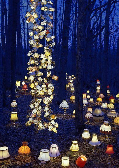 A Lamp Forest - Jim on Light