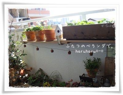 【楽天市場】haruharu*-*さんのプランターハンガー ワイドタイプ スチール製ホワイト(悠彩堂)   みんなのレビュー・口コミ