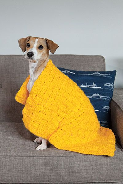 Free Knitting Pattern Dog Blanket : Free pattern, Pets and Baskets on Pinterest