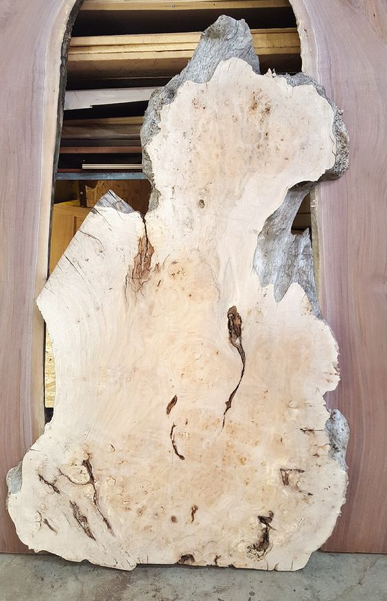 Pre-Sale for our big slab raffle tickets starts today!! Win this Big Leaf Maple Burl! All the proceeds are donated to Habitat for Humanity!