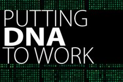 STEM-Works - Forensics Activities - Putting DNA to Work at the Museum of Nature & Science