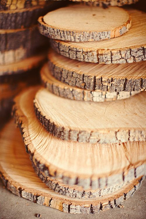 Tree trunk slices tree trunks and trunks on pinterest for Wood trunk slices