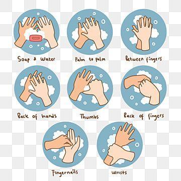 Gambar Bagaimana Untuk Mencuci Tangan Dengan Betul Langkah Demi Langkah Clipart Tangan Ilustrasi Kesedaran Kesihatan Png Dan Psd Untuk Muat Turun Percuma Mencuci Tangan Ilustrasi Spanduk