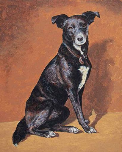 Expert hund ritning handledning