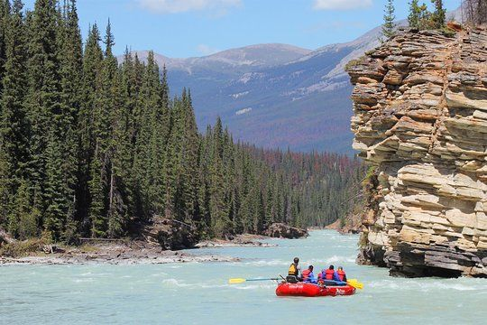 Athabasca Canyon Run Family Rafting: Class II Plus Rapids in 2020 | National  parks, Alberta travel, Trip advisor