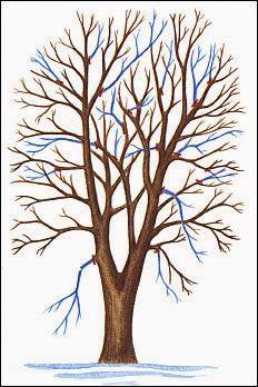 Como cada año, o cada dos, según nuestra necesidades conviene dar un repaso y acicalar a los árboles de nuestro huerto o jardín. Para ello ...