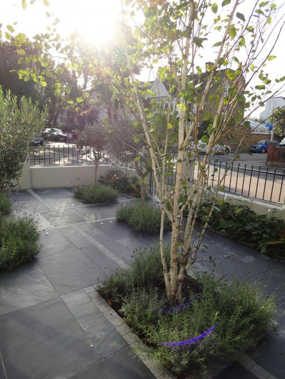 Blue black slate paving has been used in this front garden for Blue slate garden designs