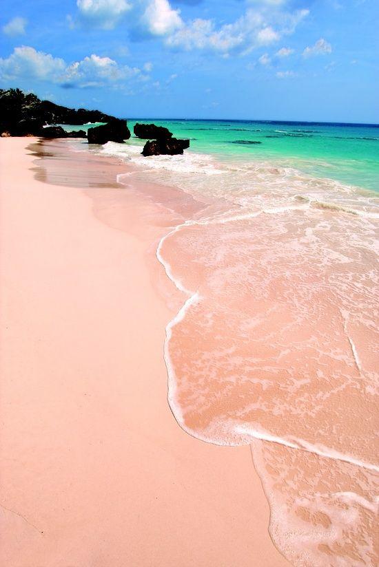 Pink sand beach, Bermuda