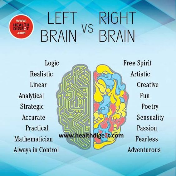 left brain vs the right brain essay Many neuroscientists consider the concept of purely left-brain vs right-brain characteristics a myth there are numerous theories and concepts that exist to explain how the right and left hemispheres of the human brain function.