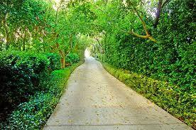 long driveway.