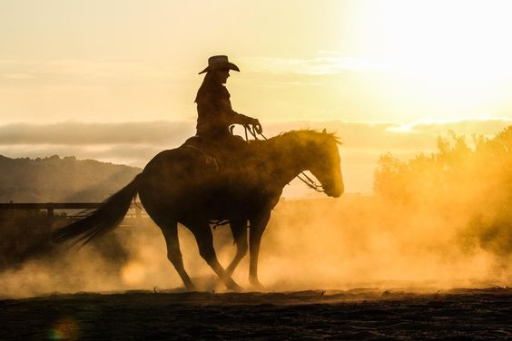 Dust at dusk. Photo by Charlotte Ballenger  #cowgirl #horse #country #hat #western #speedshopnorth #dust #sun #ride #equine