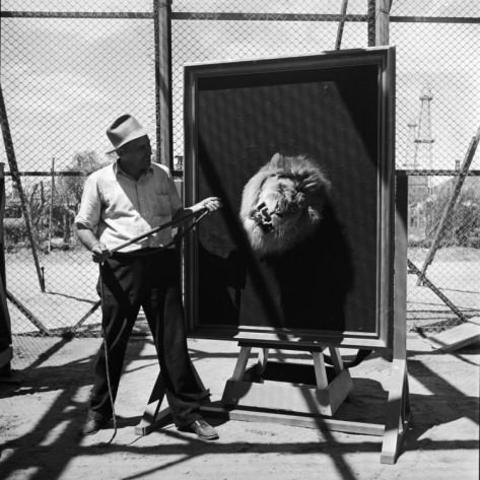Filmagem da famosa abertura dos filmes e desenhos da MGM.
