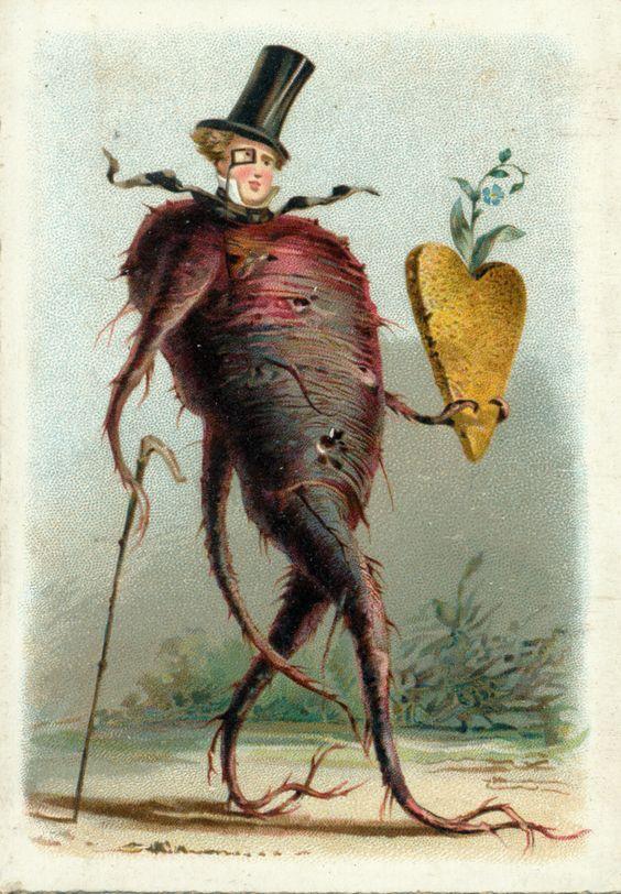 Antique vintage postcard anthropomorphic beet; beet man: