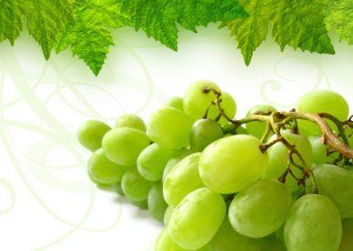 أجمل خلفيات صور فواكه العنب عالم الصور Fruit Wallpaper Organic Recipes Fruit