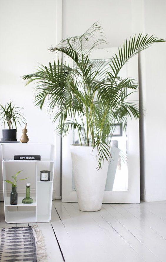 Boli sidetable and tropical plant in a charming norwegian home. Henriette Amlie Kalbekken / Designlykke.