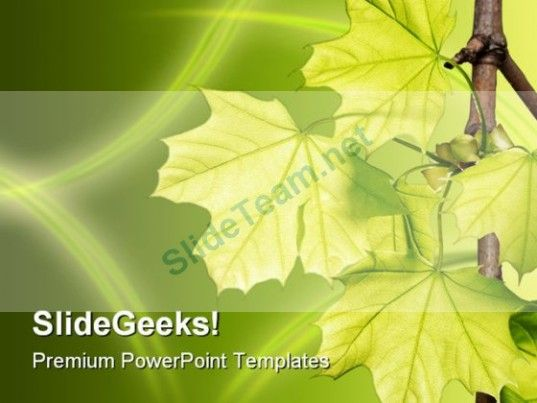 Green Energy Ppt   Google  Life Science