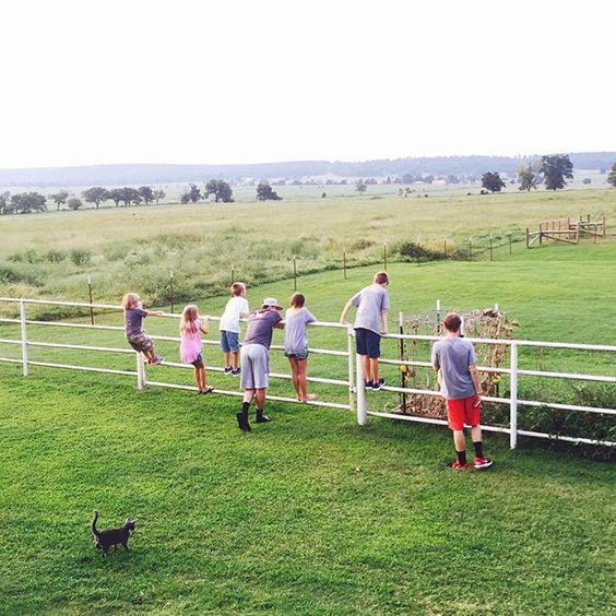 """Just chillin' on the farm."" Photo taken by @cassiebshelton on Instagram, pinned via the InstaPin iOS App! http://www.instapinapp.com (08/31/2015)"