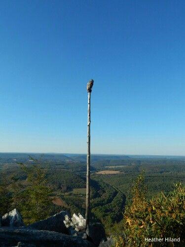 Taken on 09/26/14 @ Hawk Mountain