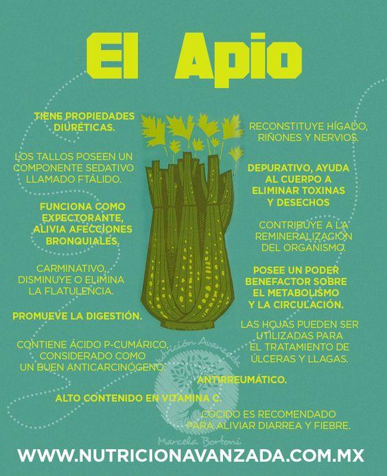 El Apio, reduce el colesterol, es anticancerígeno, diurético, por la fibra ayuda a depurar el sistema digestivo, evita estreñimiento y baja la presión sanguínea.