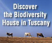Slow Food Foundation for Biodiversity
